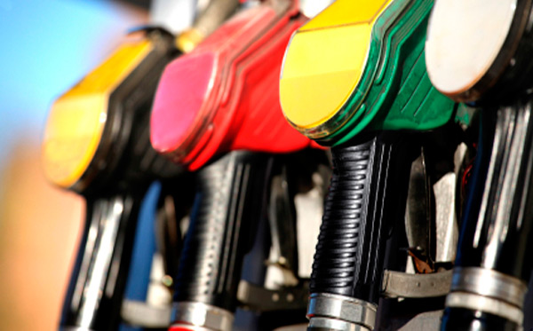 Does chip-box show significant results on both of petrol and diesel vehicles?
